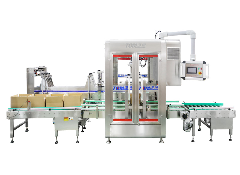 ZXJ-BB-2X automatic carton packing machine