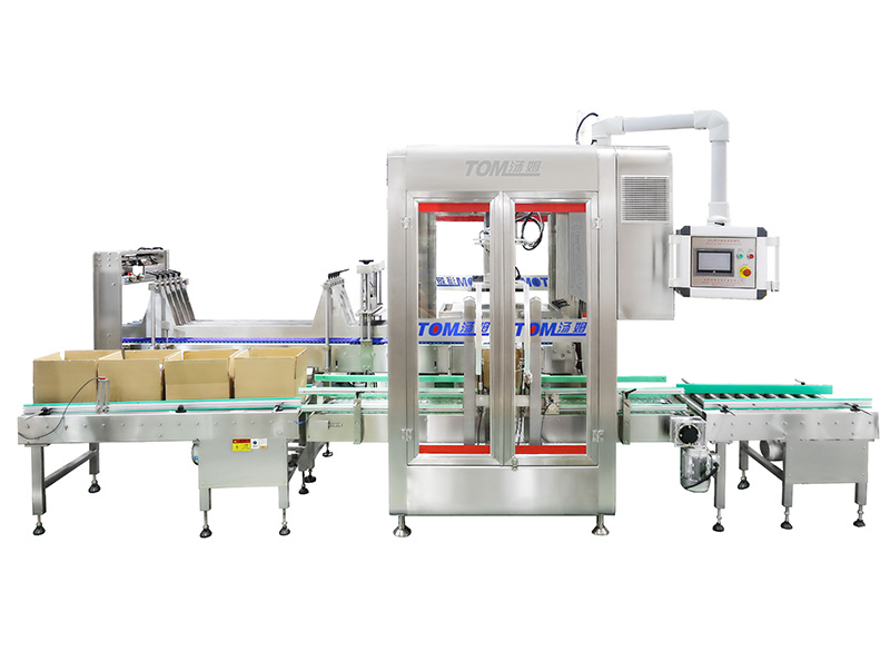 ZXJ-ZQ-2X-P automatic carton packing machine