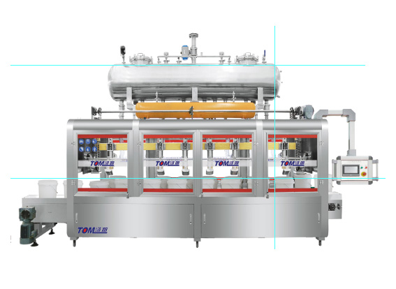 DGP-3CZ-8 Automatic weighing type filling machine